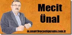 mecit41