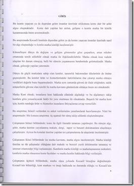 Resim (5)