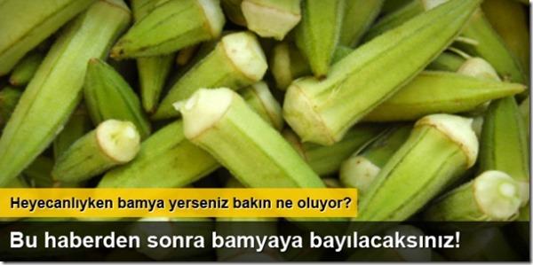 bamyanin_faydalari_nelerdir_h463156