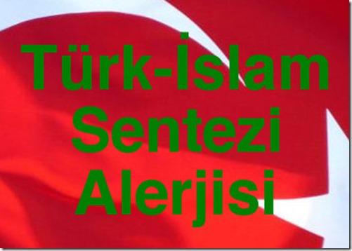Turk_islam_sentezi