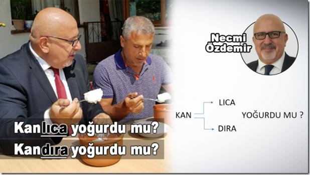 kanlica-yogurdu-mu-kandira-yogurdu-mu-1535719619